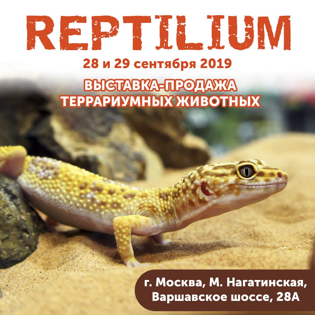 Приглашаем на выставку REPTILIUM 28-29 сентября!
