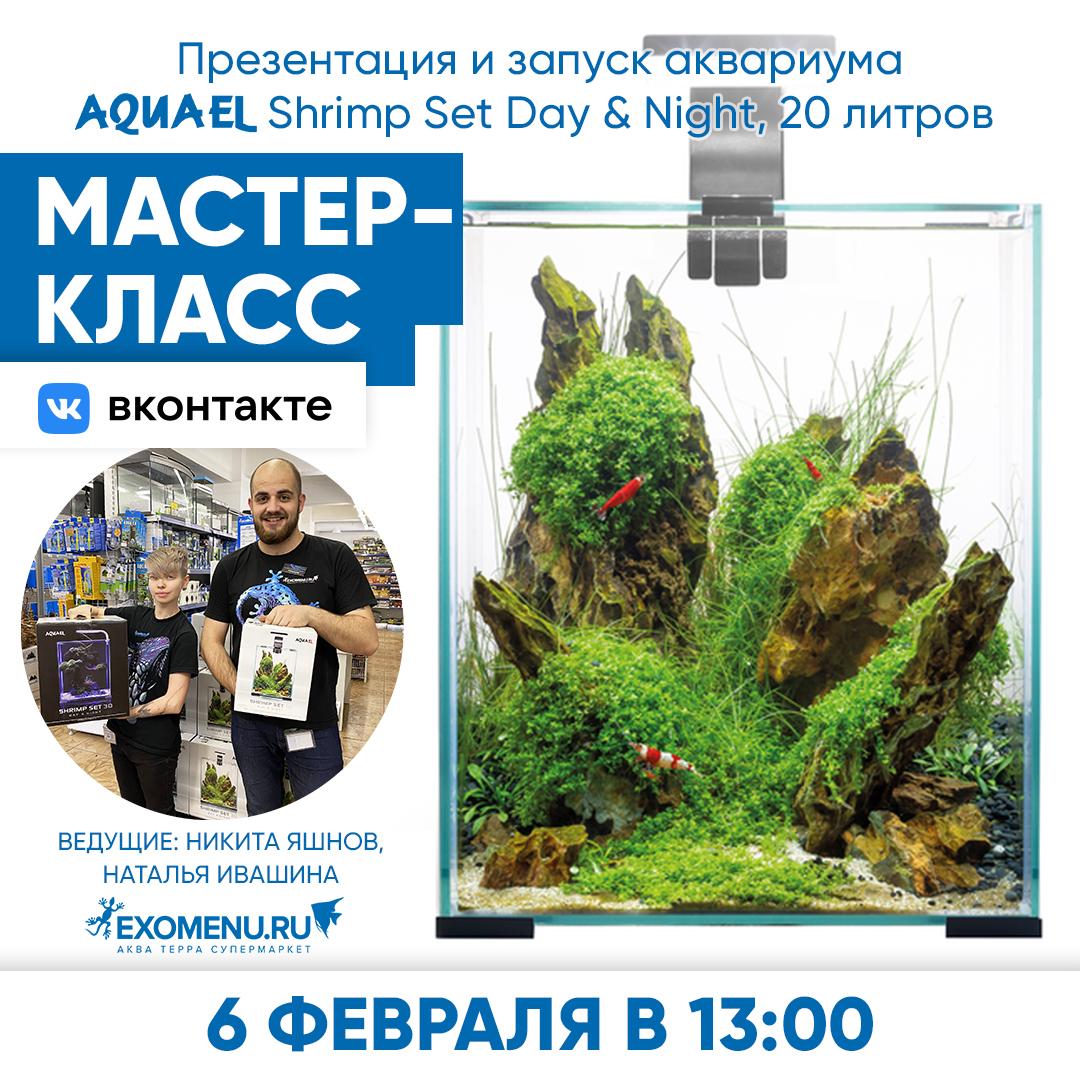 Онлайн мастер-класс во ВКонтакте. Запускаем нано-аквариум с пресноводными креветками!
