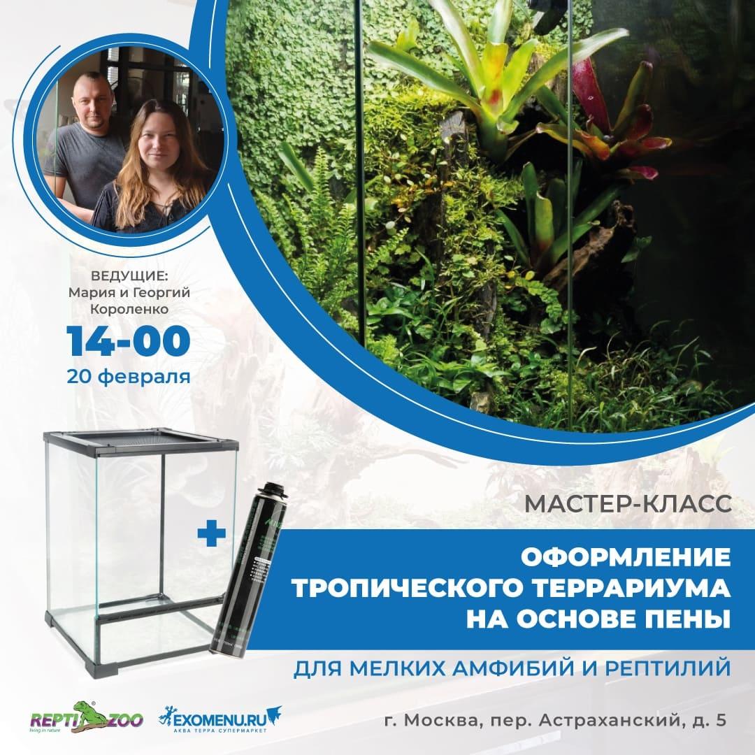 Мастер-класс по оформлению террариума Repti Zoo для мелких амфибий и рептилий.