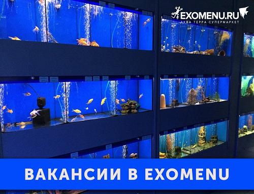 Друзья! Мы ищем коллег! Вакансии в EXOMENU!