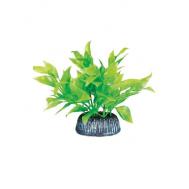 """Растение 0806 """"Альтернантера"""" зеленая, 80мм, (пакет)"""