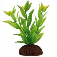 """Растение 0861 """"Альтернантера"""" зеленая цветущая, 80мм, (пакет)"""