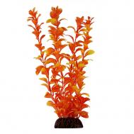 """Растение 13035 """"Людвигия"""" оранжевая, 100мм, (пакет)"""
