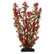 """Растение 1967 """"Людвигия"""" красная, 200мм, (пакет)"""