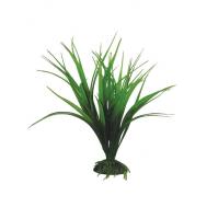 """Растение 2562 """"Сагиттария"""" зеленая, 250мм, (пакет)"""