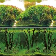 """Фон 9084/9085, 0,4*15м """"Зеленые холмы/Подводный лес"""""""