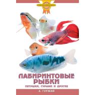 ЛАБИРИНТОВЫЕ РЫБКИ. Петушки, гурами и другие (цвет.)