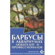 БАРБУСЫ в аквариумах любителей и профессионалов.