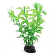"""Растение 1047LD """"Гемиантус"""" зеленый, 100мм, (пакет)"""