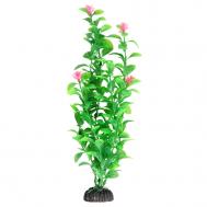 """Растение 1040LD """"Незея цветущая"""", 200мм, (пакет)"""