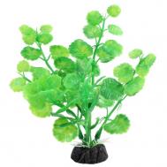 """Растение 1033LD """"Щитолистник"""" зеленый, 100мм, (пакет)"""