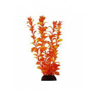 """Растение 5578 """"Людвигия"""" оранжевая, 550мм, (пакет)"""
