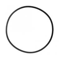 Кольцо уплотнительное для головы фильтра EX 1200