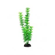 "Растение 1065LD ""Амбулия"" зеленая, 300мм, (пакет), Laguna"