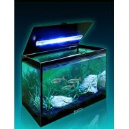 Аквариум AquaPlus LED компакт (310х200х250-4) со светильником LED RGB