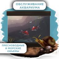 Обслуживание аквариума