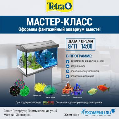 Бесплатный мастер-класс с TETRA в Санкт-Петербурге!