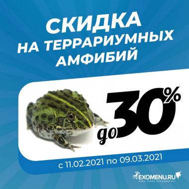 Скидки на террариумных амфибий до 30%!