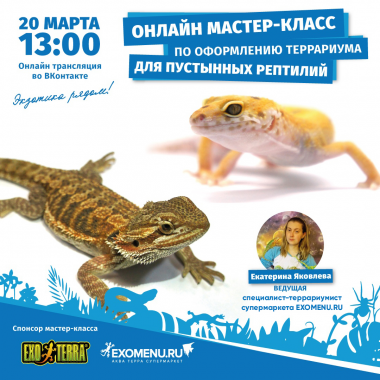 Онлайн мастер-класс во ВКонтакте! Спонсор мастер-класса - бренд EXO-TERRA.
