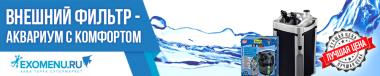 Внешний фильтр – аквариум с комфортом