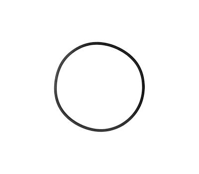Кольцо уплотнительное  для головы фильтра EX1200