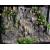 "!LUCKY REPTILE Водопад ""Waterfall"", 40х55х60см (Германия)"