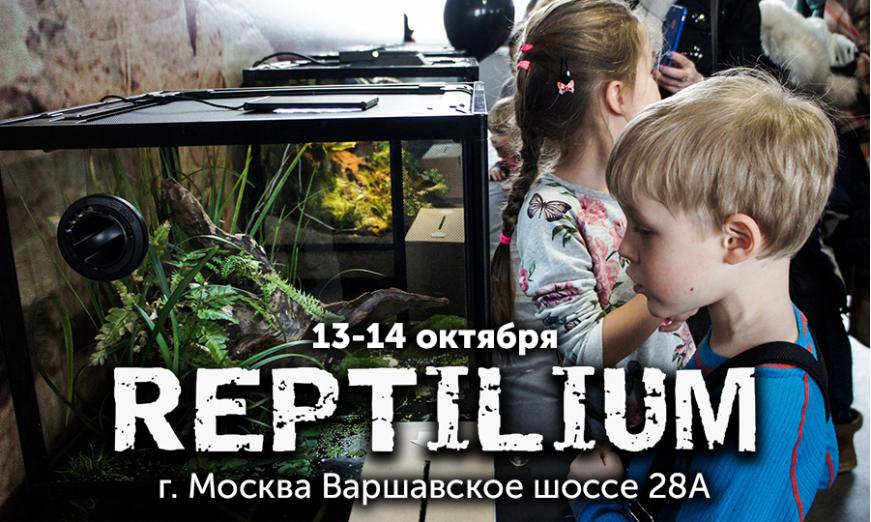 Выставка-продажа РЕПТИЛИУМ в Москве 13-14 октября.