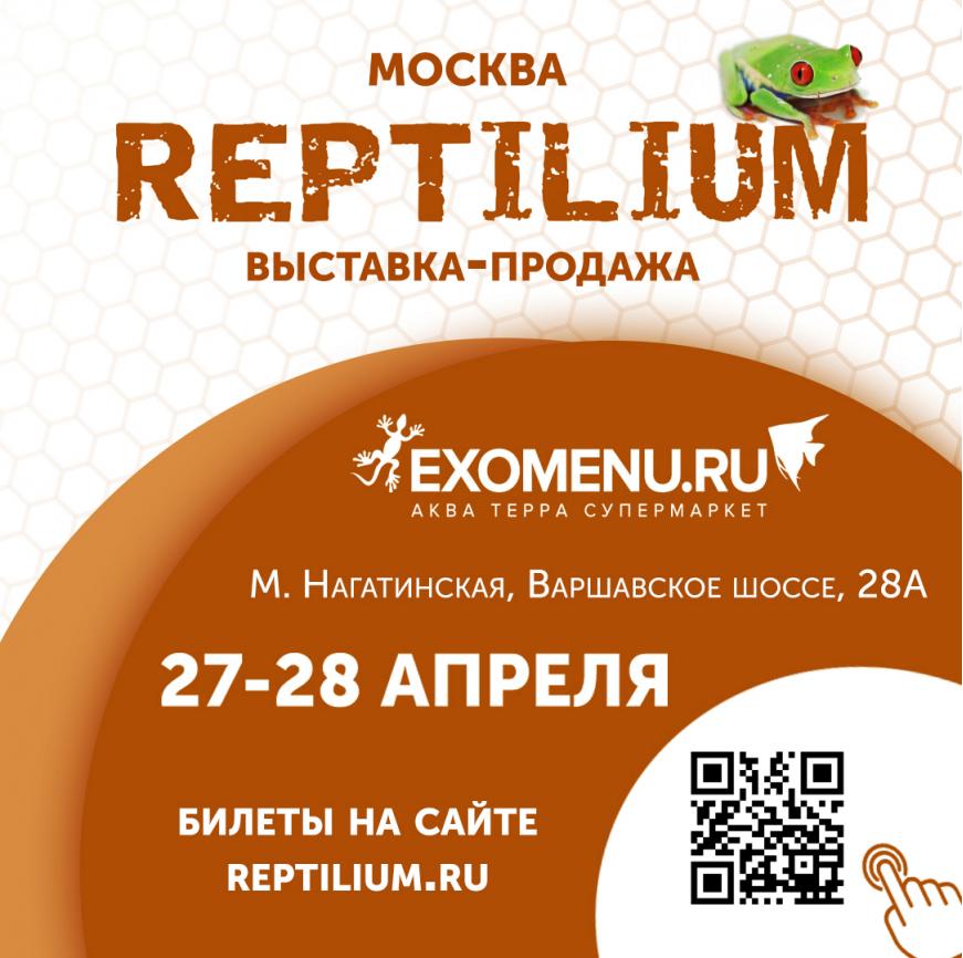 Приглашаем на выставку РЕПТИЛИУМ!