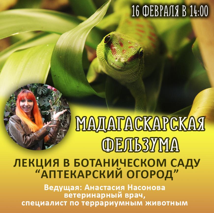 Лекция по фельзумам в Ботаническом Саду в Москве