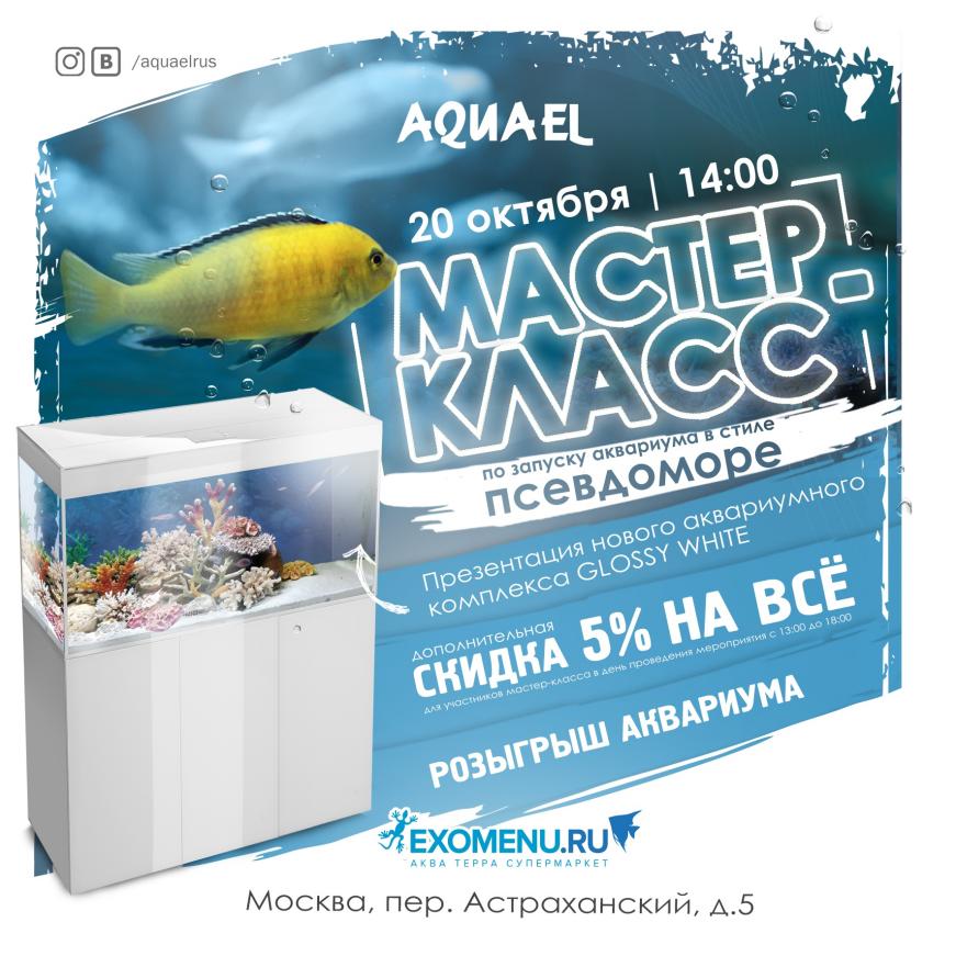 Мастер-класс от AQUAEL в московском супермаркете!