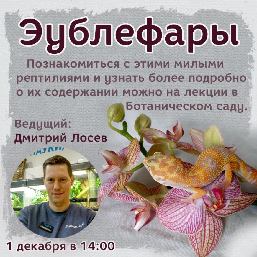 Цикл лекций про террариумных животных в Ботаническом Саду.
