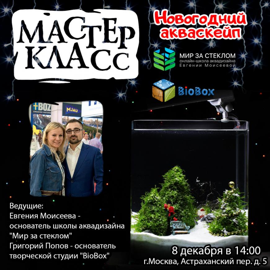 """Мастер-класс """"Новогодний Акваскейп"""" 8 декабря в EXOMENU"""