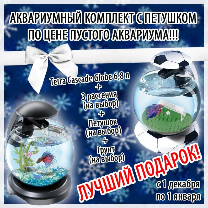 Лучший подарок - аквариумный комплект по цене пустого аквариума!