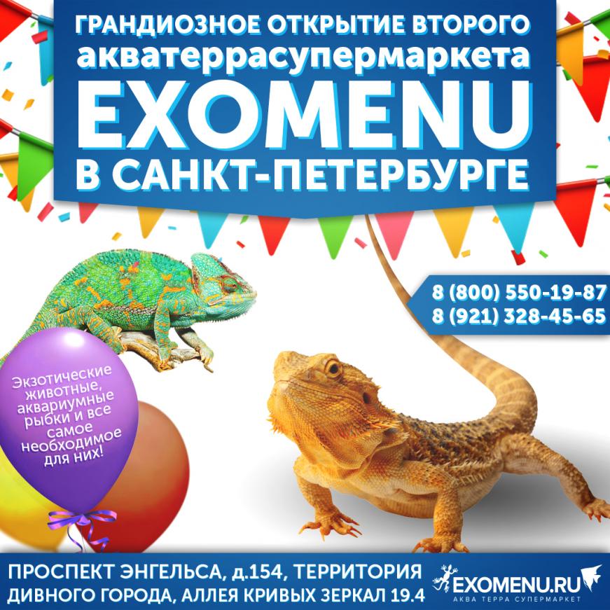 Праздничное открытие второго супермаркета EXOMENU в Санкт-Петербурге!