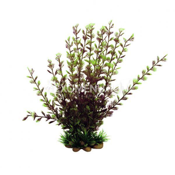 ArtUniq Cabomba furcata 20 - Искусственное растение Кабомба вильчатая красная, 20 см