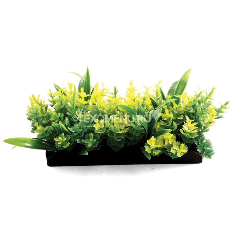 Композиция 1148LD из аквариумных растений, 50мм, (пакет)