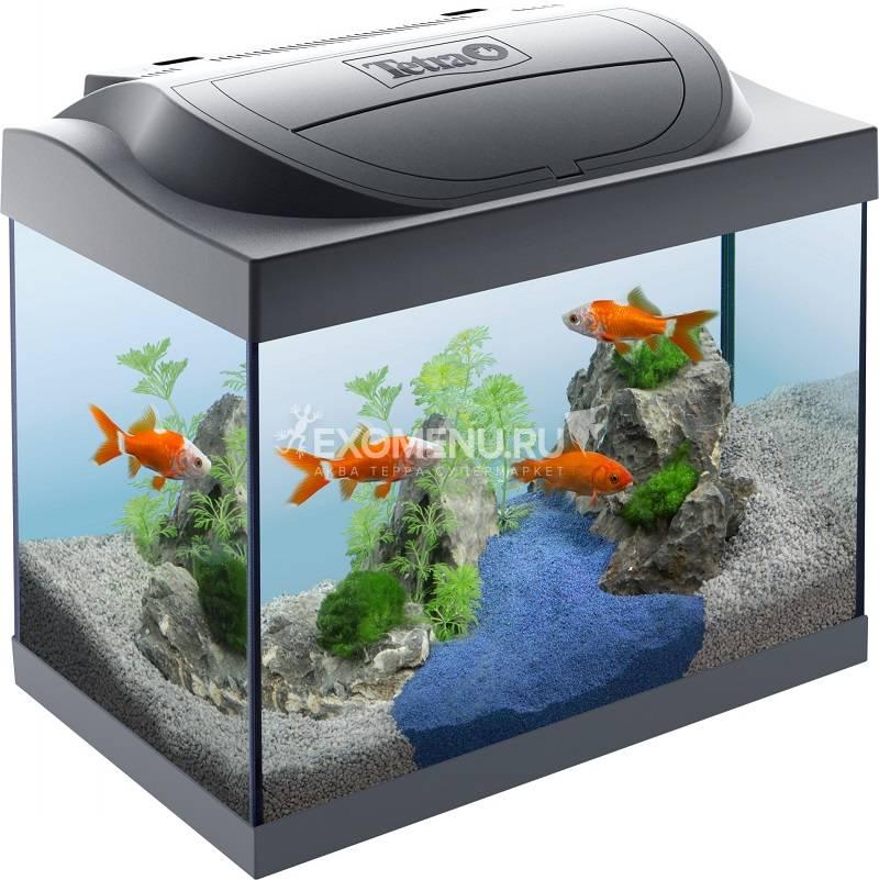 Аквариум Starter Line LED 30 л Goldfish