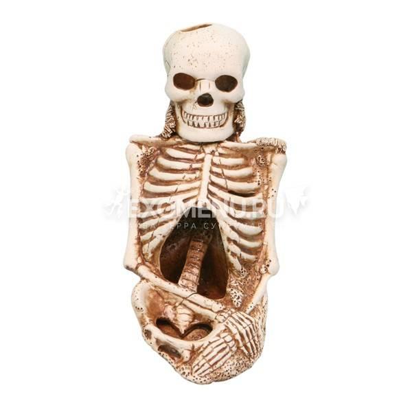 74 Скелет