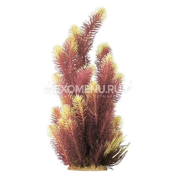Растение пластиковое PRIME Ротала желтая 38см
