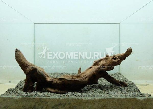DECOTOP Sumatra XXL – Натуральная коряга 19- 65 см для аквариумов от 50 л