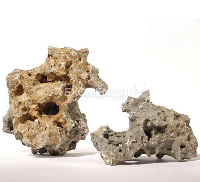 Камень Дырчатый, цена за кг