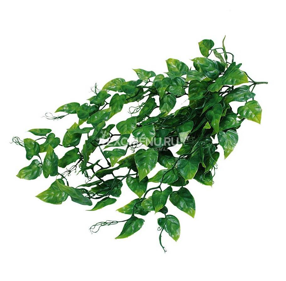 LUCKY REPTILE Декоративное растение для террариумов