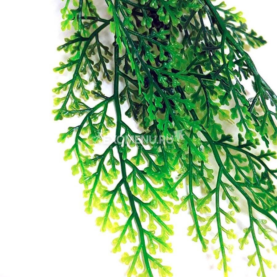 Подвесное растение - лиана мох Simple Zoo, 90 см