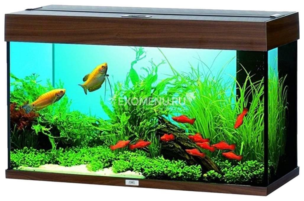 Juwel RIO 125 LED аквариум 125л темное дерево (Dark Wood) 81х36х50см 2х14W Фильтр Bioflow М, Нагр100W