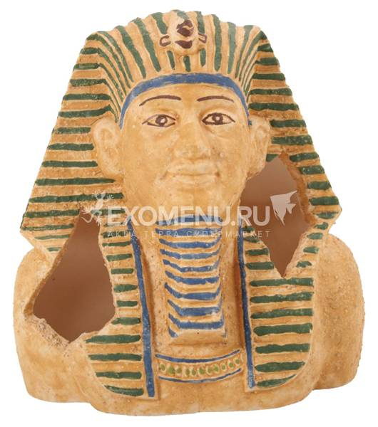 Грот Голова фараона (серия Иероглифы) ZOLUX.