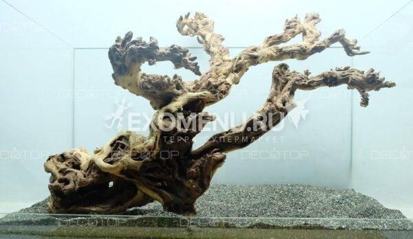 DECOTOP Sumatra XXXXL - Натуральная коряга 21-75 см для аквариумов от 60 л, от 2 кг