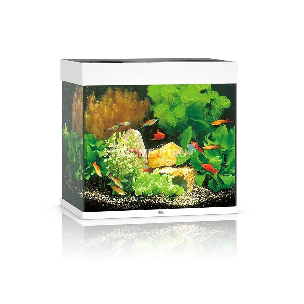 Аквариум Juwel LIDO 120 LED, 120л белый, 61х41х58см 2х12W Фильтр Bioflow M, Нагр100W ТЕСТ