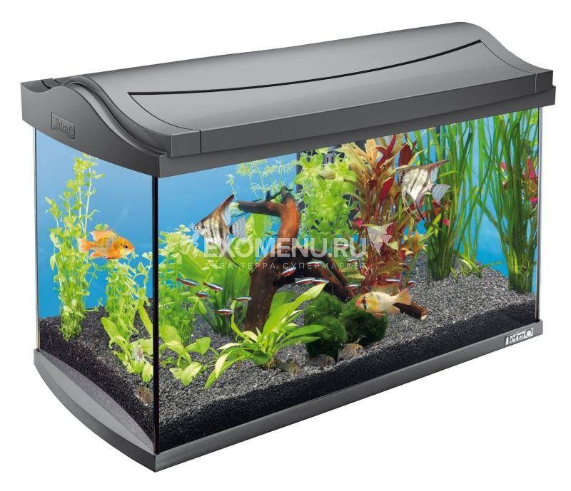 Аквариум Tetra AquaArt  60l Tropical