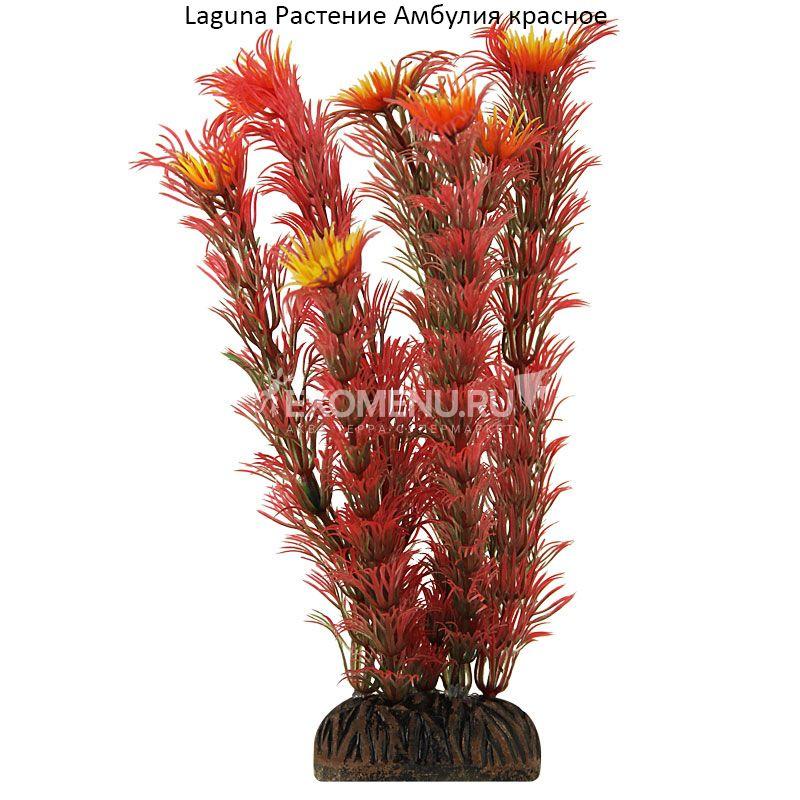 Растение 1399