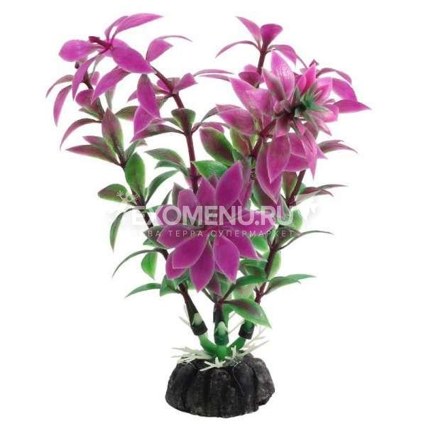 Растение 1045LD